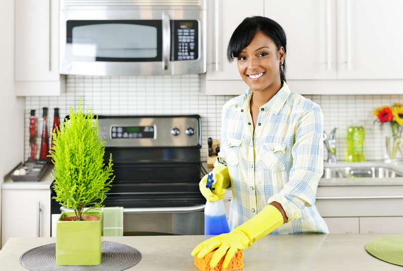 Ocala florida cleaning services