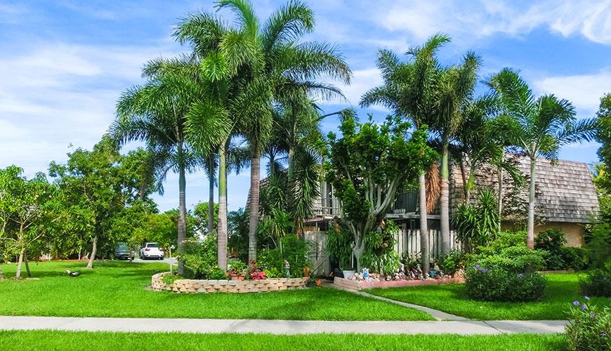 Lawn Care Services Ocala Florida