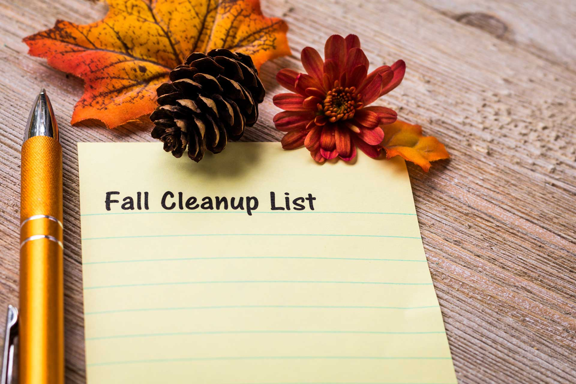 Special Fall Cleaning Tips